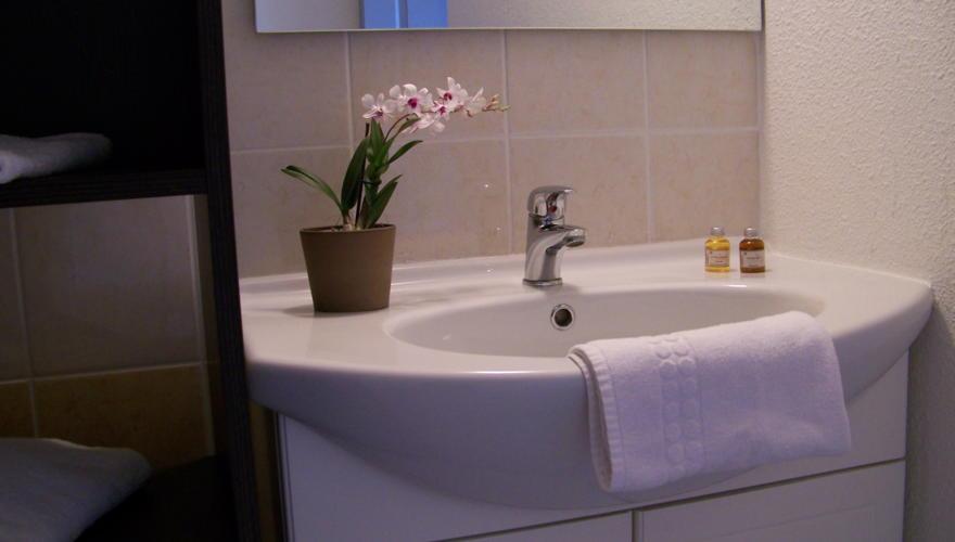 Salle de bains - Coin lavabo